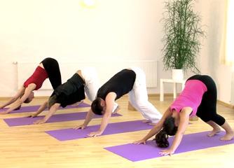 Business-Yogalehrer-Weiterbildung